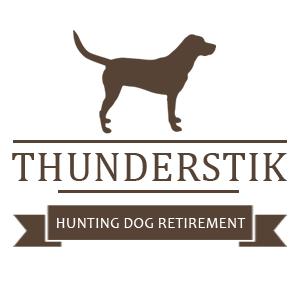 Thunderstik Rescue
